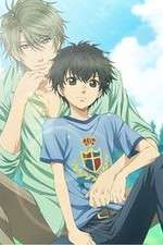 Watch Megashare Super Lovers Online