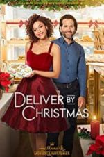 Watch Deliver by Christmas Megashare
