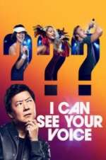 i can see your voice tv poster